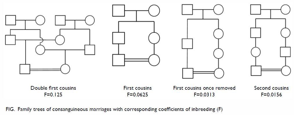 Parental consanguinity in Hong Kong | HKMJ